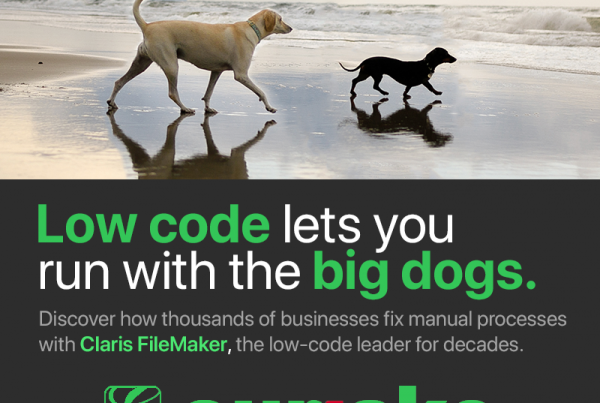 Low Code lets you run with the big dogs